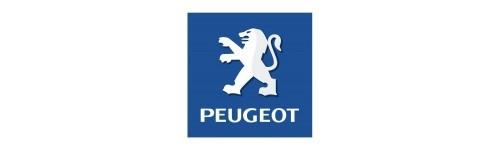 FORGE pour PEUGEOT